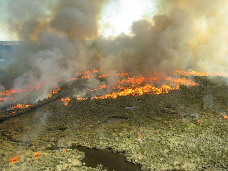 Aerialprescribed_burning_on_the_refuge