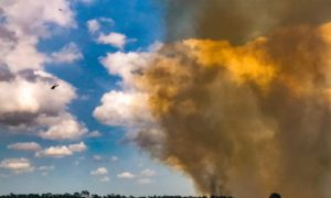 St. Lucie County Issues Burn Ban Due to Dry Conditions