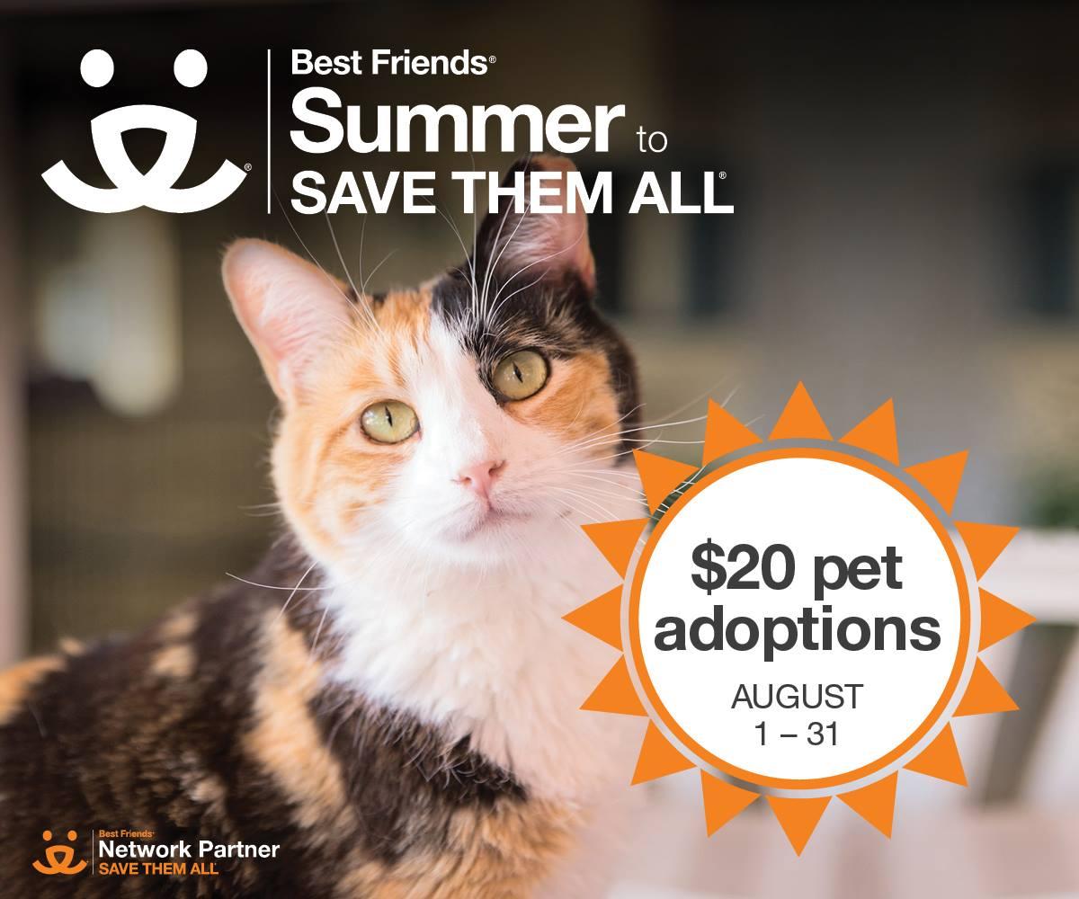 Palm Beach Humane Society Adoptions