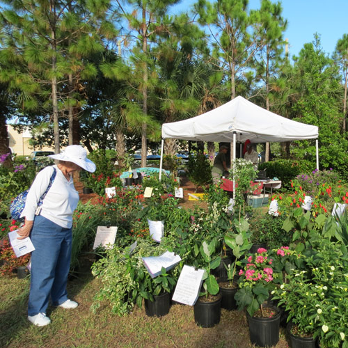 Heathcote's 30th Annual Garden Festival and Plant Sale