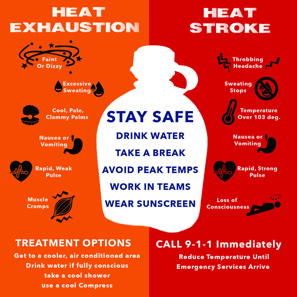Humans and Pets need to be careful of the summer heat!