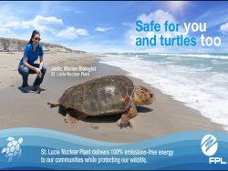 FPL 100% emissions-free energy