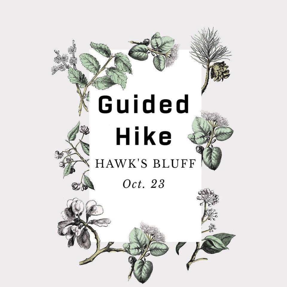 Guided Hike: Hawk's Bluff